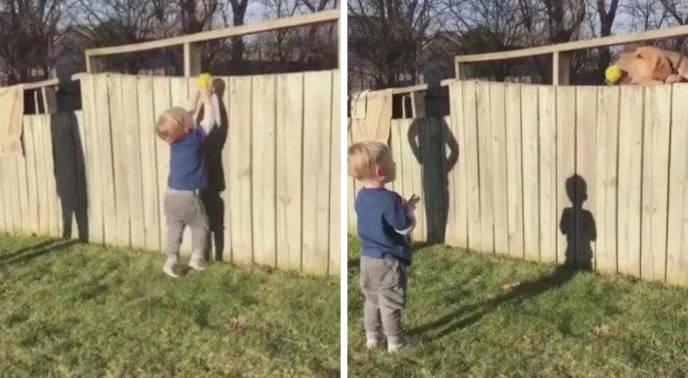 Niño y Perro jugando