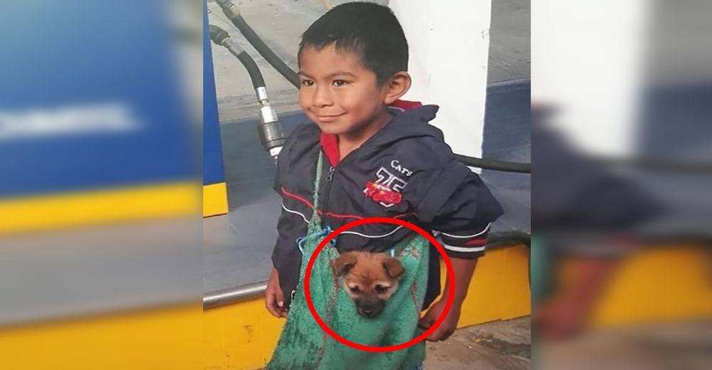 Captan a un humilde niño llevando a su perro del modo más adorable a pesar de las adversidades