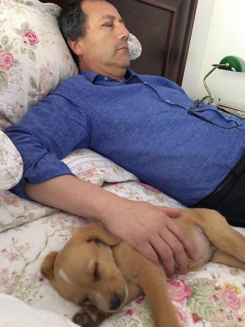 Padre y perrito