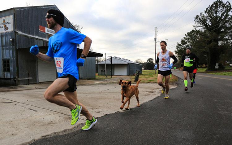 Ludivine Maraton de Elkmont