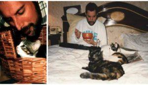 Freddie Mercury amó a sus gatos como si fueran sus propios hijos