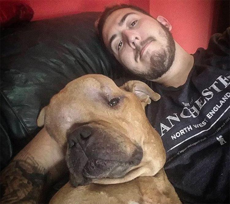 Thanos perro con tumor cerebral 1 Argentina
