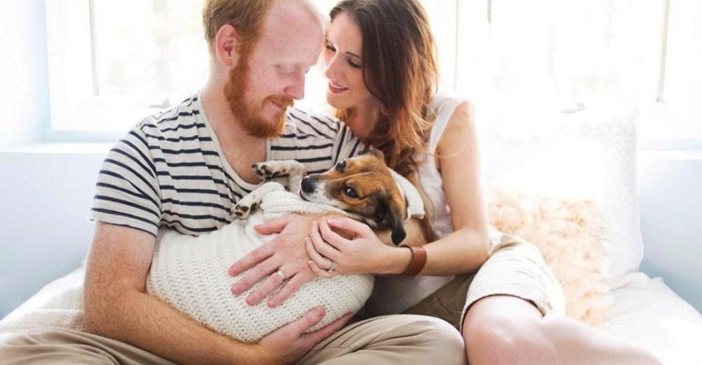 """Polémico estudio dice que tratar a un perro como un hijo sería señal de un """"trastorno mental"""""""