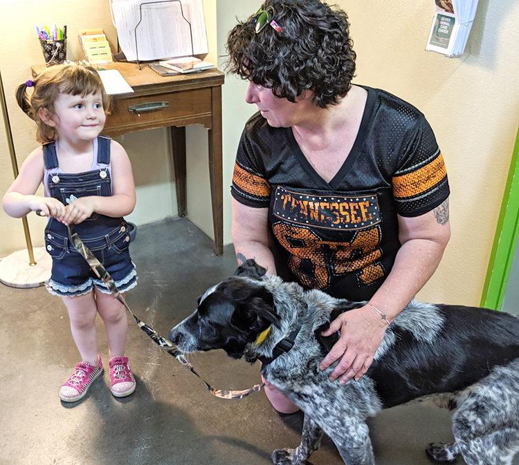 Perro salva la vida de niña