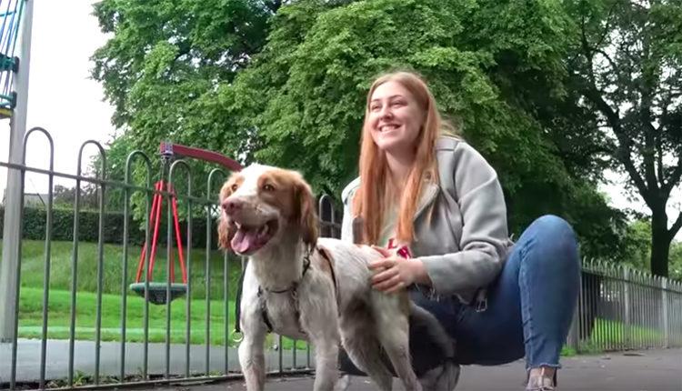 Peter perro con rara enfermedad