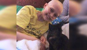 La conmovedora historia de una niña con cáncer y la gatita que llegó para aliviar sus penas