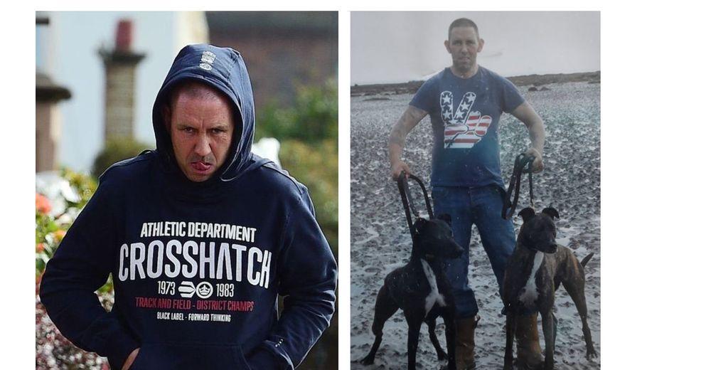 Se hace justicia con el hombre que compraba gatos en Internet como cebos para peleas de perros