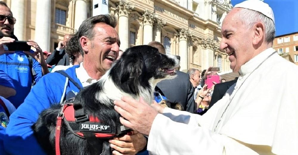 El Papa consuela un niño que perdió a su mascota y le asegura que todos los  perros van al cielo - Zoorprendente