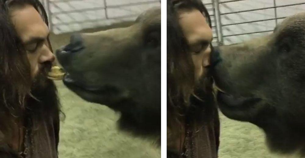 La polémica escena de un actor con un oso de 400 kilos lo convierte en blanco de críticas