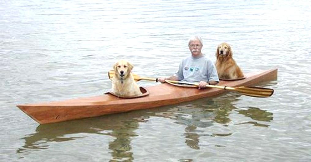 Hombre diseña un kayak personalizado para que sus perritos disfruten de sus aventuras junto a él