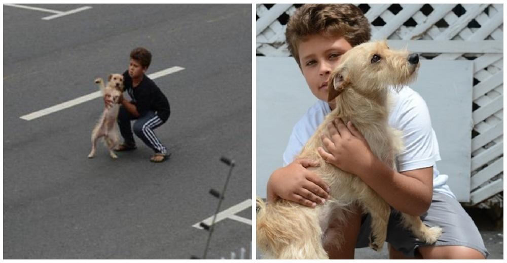 Un niño arriesga su vida para salvar al perrito que había sido atropellado y dejado en la vía