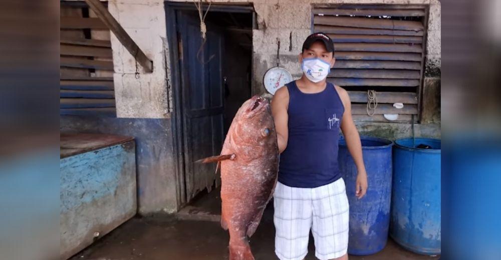 «Es un milagro, Dios se encargó»–Aparecen peces gigantes en una población que no tenía qué comer