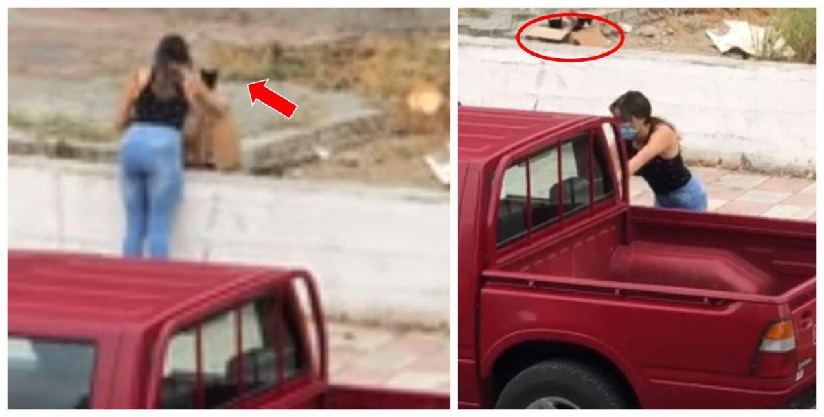 Difunden el video del momento exacto en que dos mujeres abandonan a estas criaturas en una caja