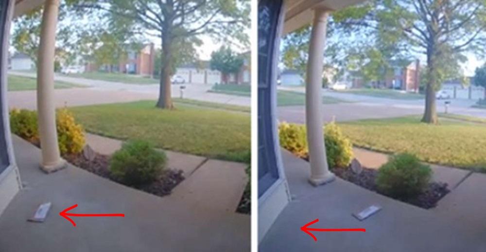 Descubre en la cámara que el sobre que dejó es arrastrado misteriosamente hasta desaparecer