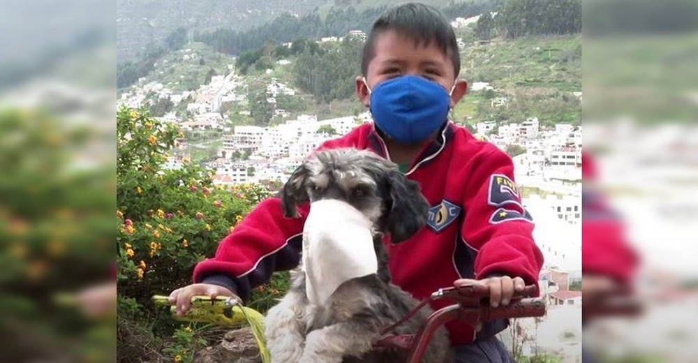 Habla el niño que se hizo viral tras ser grabado protegiéndose él y su perro con un tapabocas