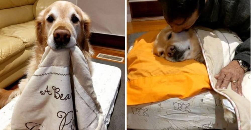 Papá que se negaba a tener un perro en casa lo arropa antes de dormir