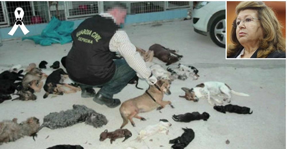 """Mujer sin alma se enfrenta a la justicia tras exterminar 2.000 animales en su """"santuario"""" falso"""