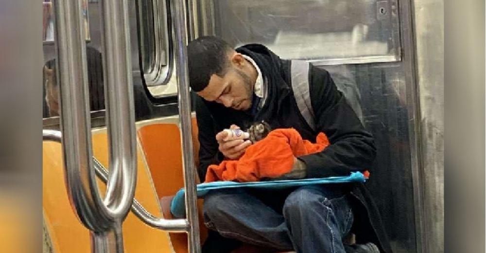 Un hombre es captado en el metro alimentando con un biberón a un indefenso gatito