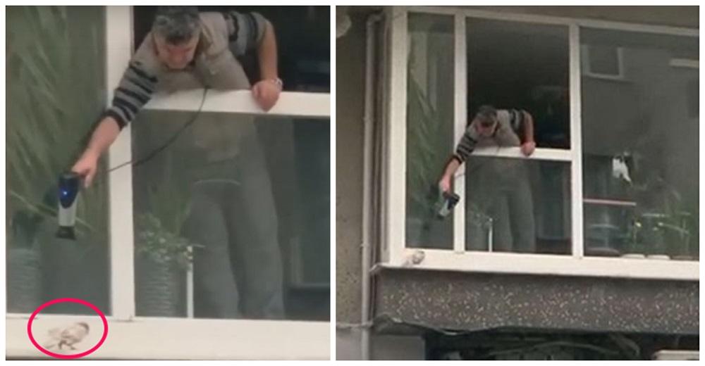 Un hombre lucha por calentar a una palomita que temblaba de frío afuera de su ventana