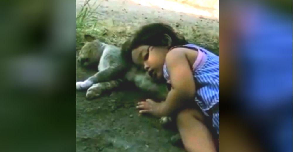 Una madre regresa a casa y encuentra a su hija dormidita sobre el gatito que yacía inmóvil