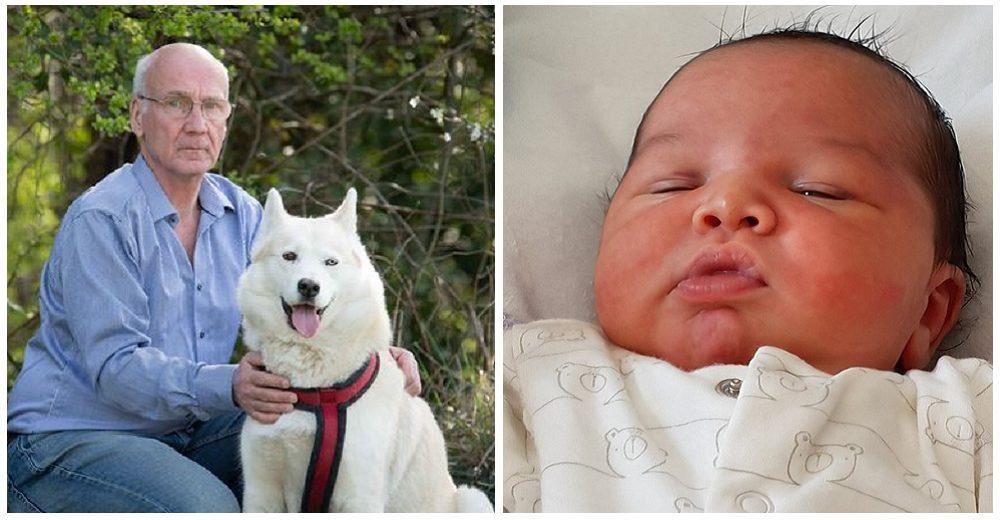Bebé abandonado luchaba por su vida entre los arbustos y un perro corre a tomarlo con su hocico
