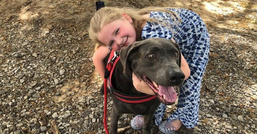 Un perro consuela a una niña de 6 años afligida en el funeral de su papá emocionando a todos