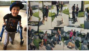 Más de 100 perritos llegan a la casa de un pequeño con discapacidad tras la súplica de su madre