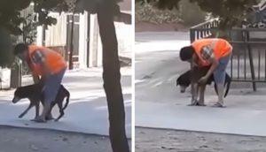 """Saca a su perrito anciano a la calle sin saber que lo veían – """"Ya no es el mismo de antes"""""""
