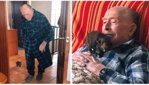 Graban al abuelito de 100 años que no puede separarse de un diminuto gatito