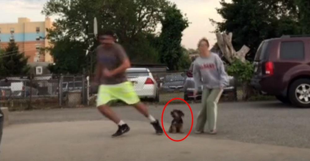 Una pareja corre en sentidos opuestos para probar el amor de su perrita