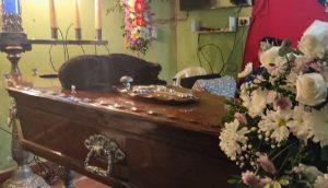 Llora sobre el ataúd de su amado dueño y se niega a separarse de su lado en su funeral