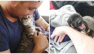 Mascotas no pueden dejar de contemplar con ojitos de amor a sus dueños