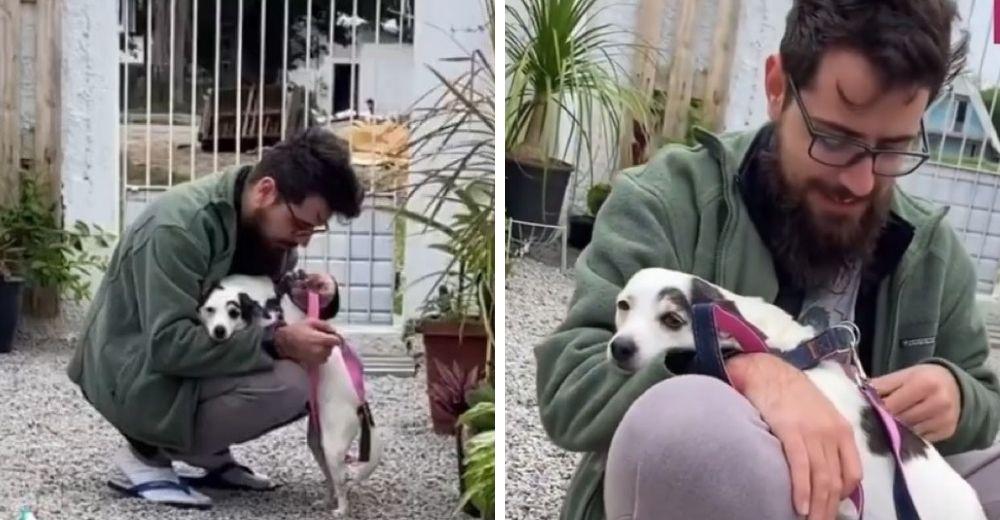 Una perrita adoptada suplica con desesperación que no la saquen a pasear, teme ser abandonada
