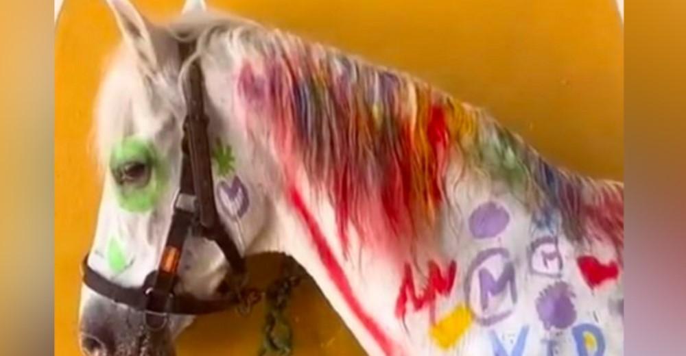 Les piden a los niños que dibujen sobre todo el cuerpo de un caballo blanco «para divertirse»