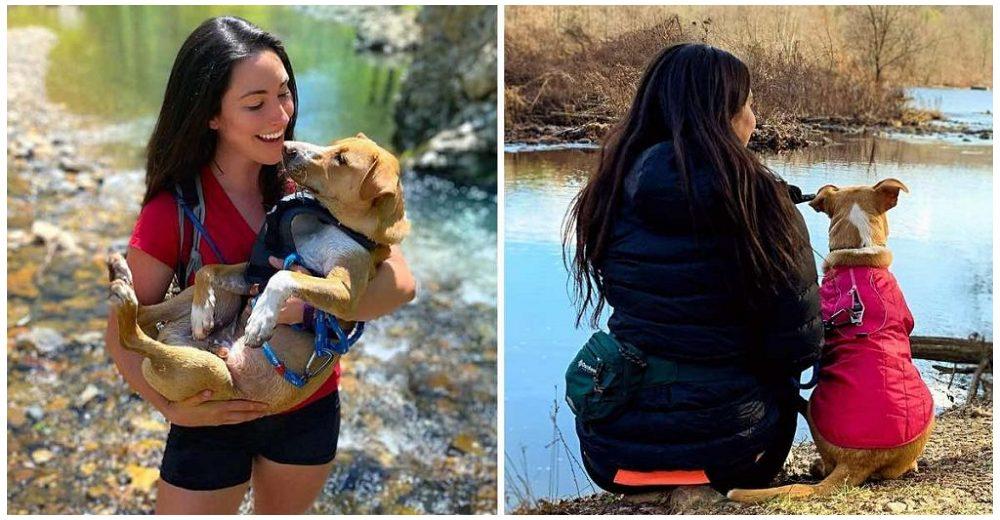 Mujer encuentra un perrito herido abandonado en un sendero, lo adopta y ahora son inseparables