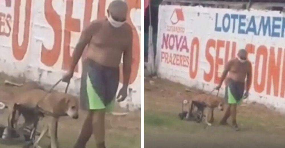 Con sus pocas fuerzas un anciano saca a pasear cada mañana a su amado perrito con discapacidad