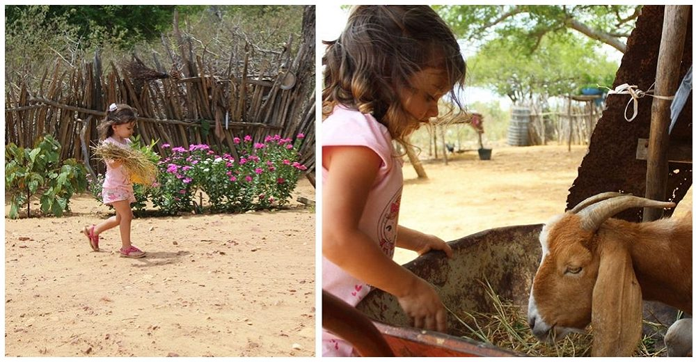 Preocupada, una niña de 4 años acude a alimentar a una cabra discapacitada
