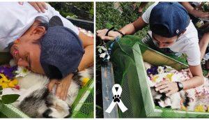 Devastado, despide a su perro el joven que conmovió a millones tras su larga lucha por salvarlo