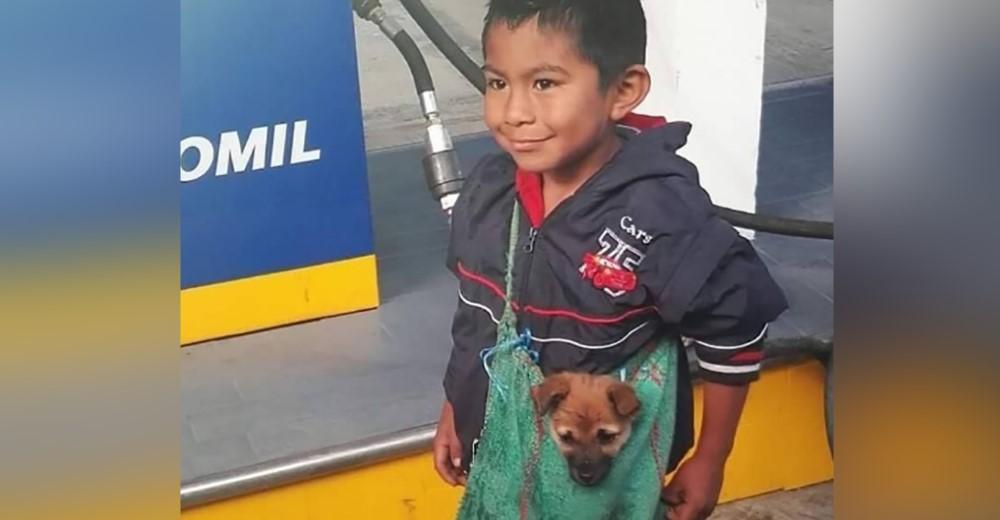 Un humilde niño lleva a su perro en un bolso a pesar de las adversidades
