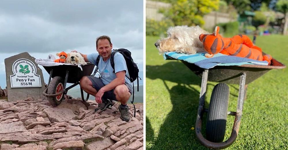 Un hombre lleva a su perro con cáncer a la montaña para tener una última aventura