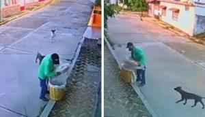 Graban a un vendedor ambulante compartiendo su comida con los perritos hambrientos de la calle