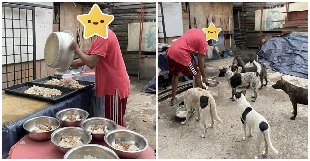 Piden ayuda para el hombre que sin tener nada se dedica a alimentar a los perros callejeros