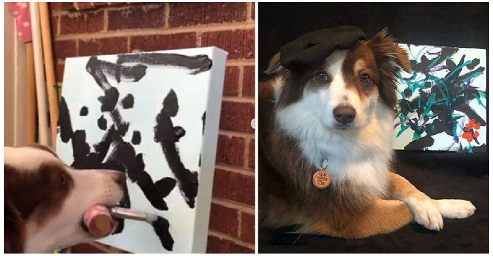 Ivy, la perrita pintora que vende sus cuadros para ayudar a los animalitos más necesitados