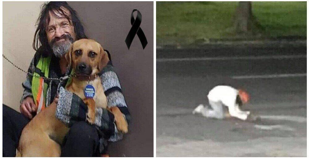 El día que un hombre sin hogar lloró sin consuelo por su perrito arrollado –»Era mi único amigo»