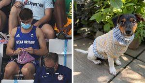 Captan a un medallista olímpico tejiendo suéteres para perritos antes de su competencia final