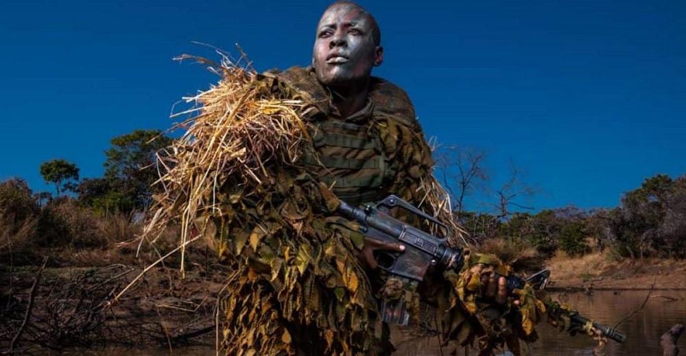 Escuadrón de valientes mujeres combaten a los cazadores furtivos de elefantes en África