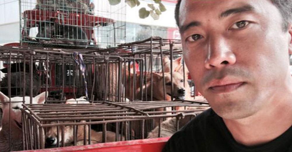 El activista Marc Ching ya ha salvado a miles de perros de ser comidos en China