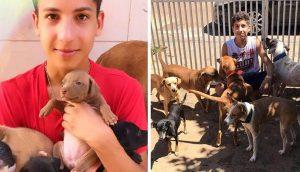Joven de 17 años abre un refugio de animales único y ya ha rescatado a 22 perritos y 4 gatitos