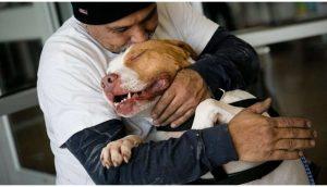 Perrito abraza feliz a su dueño tras cumplir su promesa de volver al refugio para salvarlo